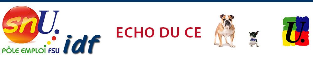 Echo du CE de janvier 2018